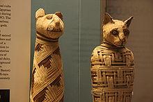 1 Ditemukan 8 Juta Mummi Hewan di Kuburan Tanah Mesir