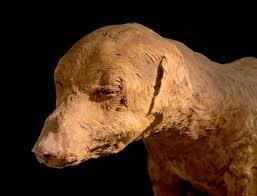 2 Ditemukan 8 Juta Mummi Hewan di Kuburan Tanah Mesir